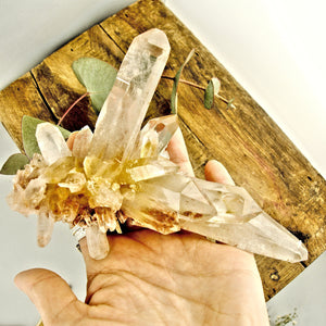 AA Grade Incredible Large Pink & Golden DT Elestial Samadhi Quartz Cluster From The Himalayas