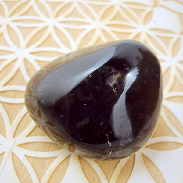 Deep Chocolate Brown Shiny Smoky Quartz Palm Stone1 - Earth Family Crystals