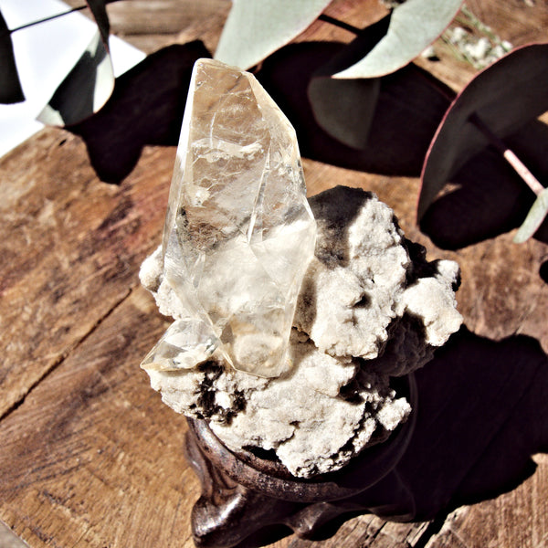 Elmwood Mine DT Golden Stellar Beam Calcite Nestled in Matrix