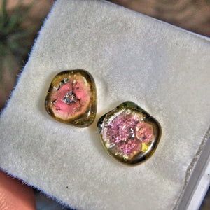 Set of 2 Rare Watermelon Tourmaline Polished Slices From Brazil in Collectors Box