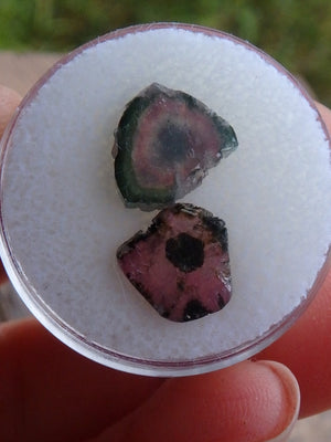 Pink Tourmaline & Watermelon Tourmaline Slice Collectors Set From Brazil - Earth Family Crystals