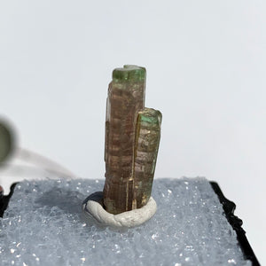 Rare Gemmy Watermelon Tourmaline Point From Brazil in Collectors Box #2 - Earth Family Crystals