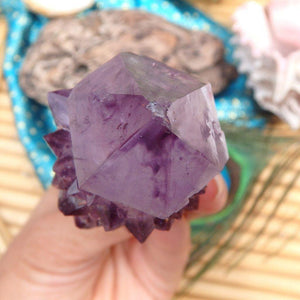 Amazing Ametrine Star Spirit Quartz Point - Earth Family Crystals