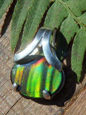 AA Grade Alberta Ammolite Flashy Fossil Pendant in Sterling Silver (Includes Silver Chain) - Earth Family Crystals