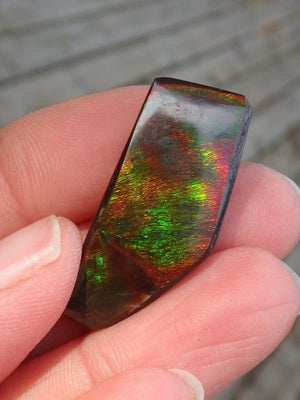 Bold Green & Red Flashes Ammolite Cabochon From Alberta - Earth Family Crystals