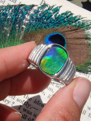High Grade Brilliant Green, Blue & Golden Alberta Ammolite Gemstone Ring In Sterling Silver (Size 10.5) - Earth Family Crystals