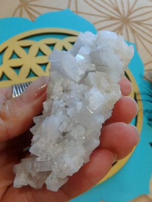 Soft Blue Angel Wing Anhydrite with Quartz Frosting - Earth Family Crystals