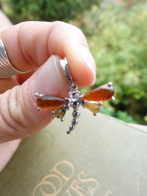 Cute Dragonfly Baltic Amber  Pendant In Sterling Silver (Includes Silver Chain) - Earth Family Crystals