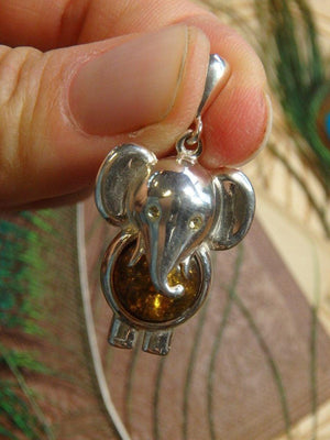 Adorable Baltic Amber Elephant Gemstone Pendant In Sterling Silver (Includes Free Silver Chain) 1 - Earth Family Crystals