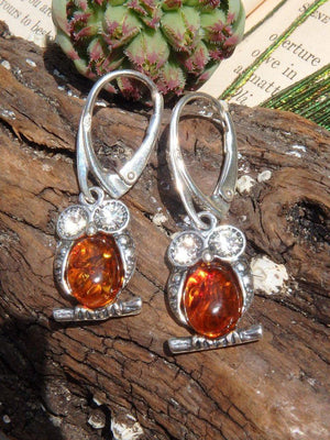 Adorable Baltic Amber Owl Earrings In Sterling Silver - Earth Family Crystals