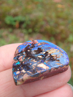 Stunning Flashes Boulder Opal Cabochon From Queensland, Australia - Earth Family Crystals