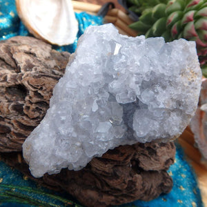 Mini Blue Druzy Celestite Specimen - Earth Family Crystals