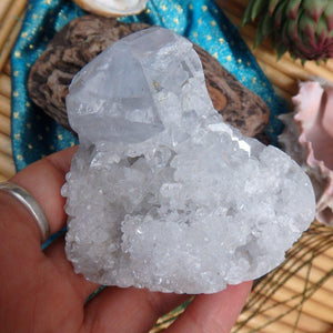 3D Depth Soft Blue Celestite Geode Heart - Earth Family Crystals