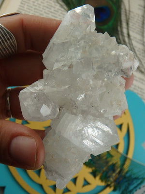 High Vibration Sparkly Clear Apophyllite Specimen From India - Earth Family Crystals