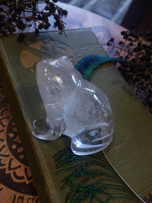 Adorable Clear Quartz Frog Carving (REDUCED) - Earth Family Crystals