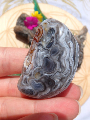 Ancient Water Included~Enhydro Filled Agate Nodule From Brazil - Earth Family Crystals