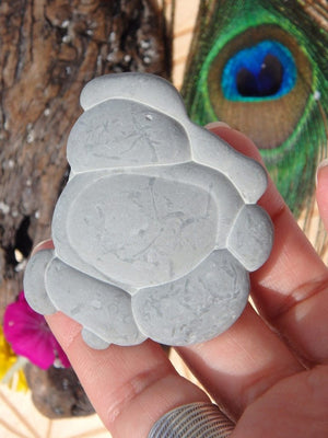Adorable Fairy Stone Concretion Free Form From Quebec, Canada - Earth Family Crystals