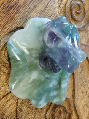 Cute Rainbow Fluorite Frog On Green Jade Lily Pad Carving 1 - Earth Family Crystals