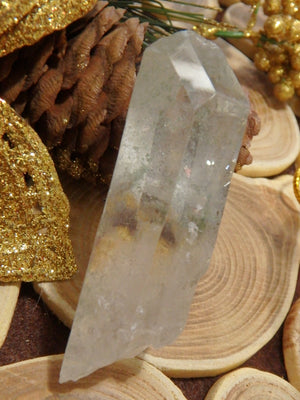 Natural & Unpolished Green Chlorite Included Quartz Point From Brazil 1 - Earth Family Crystals