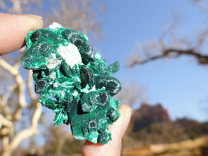 Gorgeous MALACHITE & AZURITE Natural CLUSTER* - Earth Family Crystals