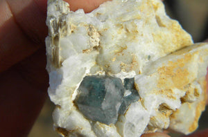 Dark blue AQUAMARINE On Matrix With Muscovite* - Earth Family Crystals