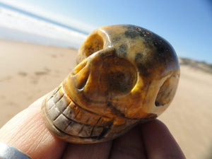 Vibrant BUMBLE BEE JASPER Skull~ Stone of Telepathy,Boosts Energy, Protection* - Earth Family Crystals
