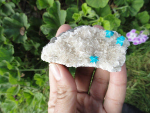 Electric Blue CAVANSITE Clusters On Matrix * - Earth Family Crystals