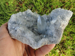 Sparkling Soft Blue CELESTITE CLUSTER ~ Accessing Angelic realms, Calming, Clear communication* - Earth Family Crystals