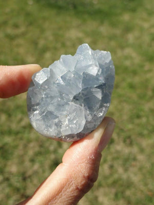Small Precious Blue CELESTITE EGG ~ Accessing Angelic realms, Calming, Clear communication* - Earth Family Crystals