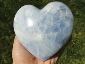 XL Sky Blue CALCITE HEART~ The Stone of Memory retention, Calming, Relaxation * - Earth Family Crystals