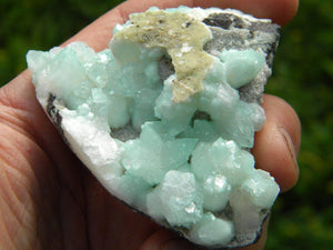 Amazing Mint GREEN APOPHYLLITE Crystal* Hippie Healing Reiki Magic - Earth Family Crystals