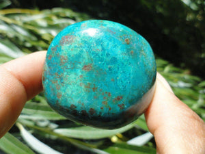 Chunky Blue CHRYSOCOLLA PALM STONE From Peru* - Earth Family Crystals