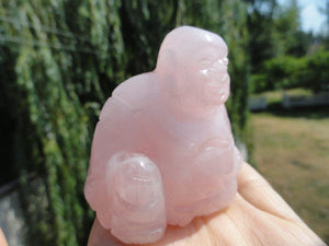 ROSE QUARTZ BUDDHA Carving* - Earth Family Crystals