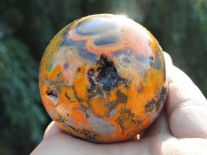 Vibrant & Bold BUMBLE BEE JASPER Sphere with caves* - Earth Family Crystals