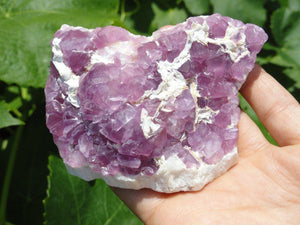 Magnificent Magenta FLUORITE SPECIMEN* - Earth Family Crystals
