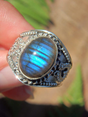 Cobalt Blue Ribbons Labradorite Ring in Sterling Silver (Size 8.5) - Earth Family Crystals