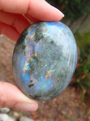 Rainbow Flashes With a Hint of Purple Labradorite Specimen - Earth Family Crystals