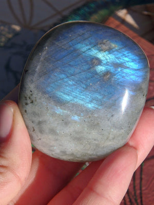 Gorgeous Flashes Labradorite Palm Stone 6 - Earth Family Crystals