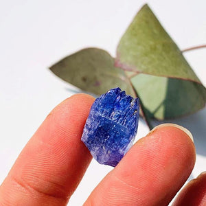 15.5CT High Grade Multi Terminated Gemmy Tanzanite Specimen in Collectors Box #1 - Earth Family Crystals
