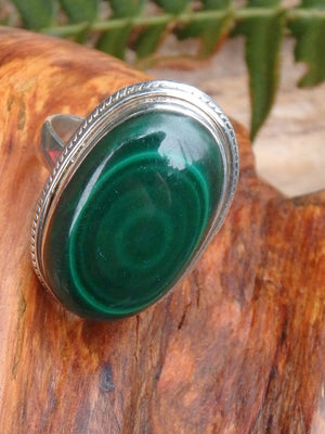 Bulls Eye Swirls Malachite Ring in Sterling Silver (Size 9) - Earth Family Crystals