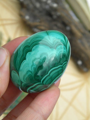 Amazing Green Flower Pattern Malachite Egg Carving - Earth Family Crystals