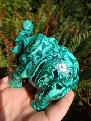 Absolutely Splendid Jumbo Malachite Elephant Carving - Earth Family Crystals