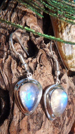 Amazing Glow Rainbow Moonstone Gemstone Earrings In Sterling Silver - Earth Family Crystals