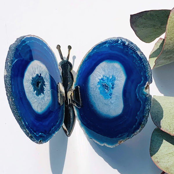 Gorgeous  Agate Display Butterfly Specimen #2