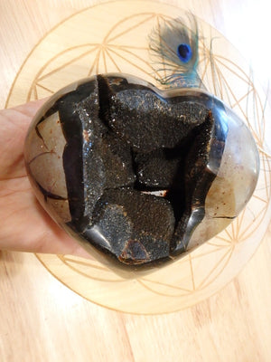 XL Deep Geode Cave Septarian Dragon Heart Specimen - Earth Family Crystals
