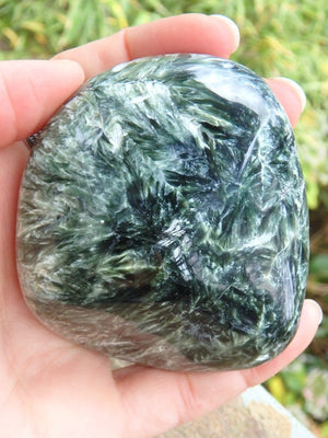 Incredible Large & Smooth Silvery Angel Wings Seraphinite Specimen - Earth Family Crystals