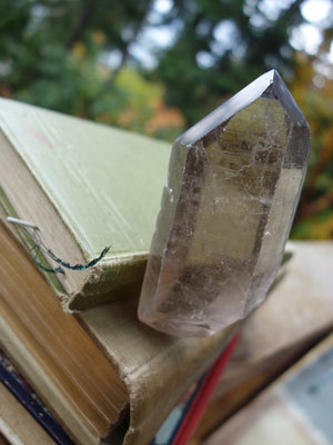 One Of a Kind Double Terminated Rutilated Smoky Quartz Point From Brazil - Earth Family Crystals