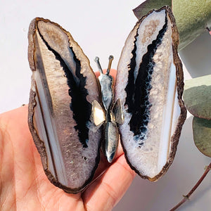 Gorgeous  Agate Display Butterfly Specimen #5
