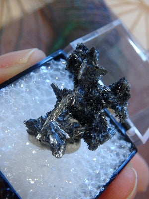 Unique Stibnite Formation In Collectors Box From Herja Mine, Romania - Earth Family Crystals