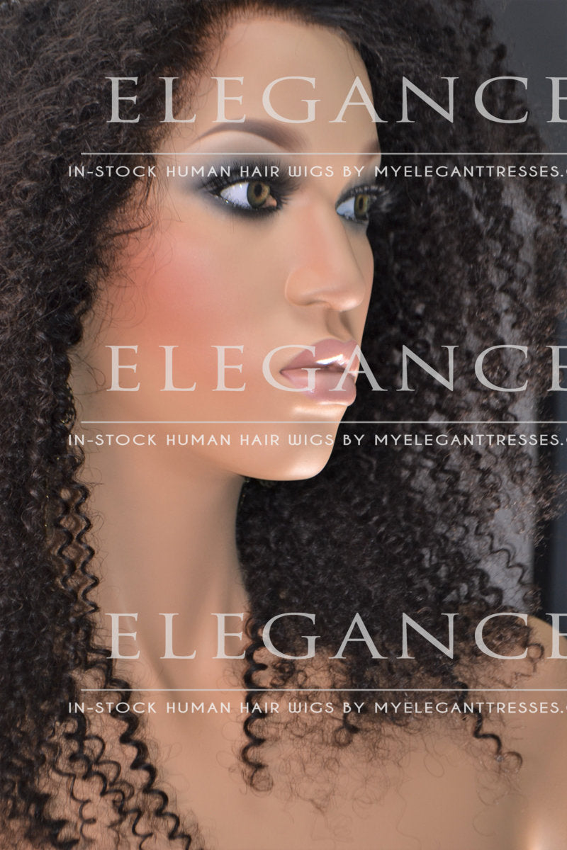 Karen Full Lace African American Wig - My Elegant Tresses - Afro Kinky Curly Lace Wig